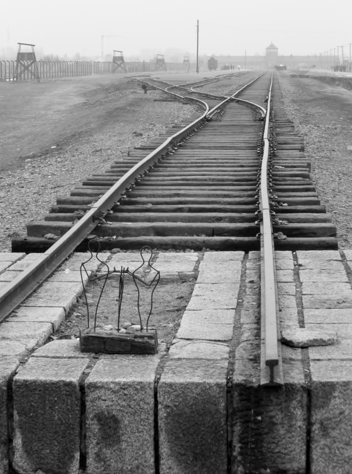 The infamous train track at Auschwitz-Birkenau